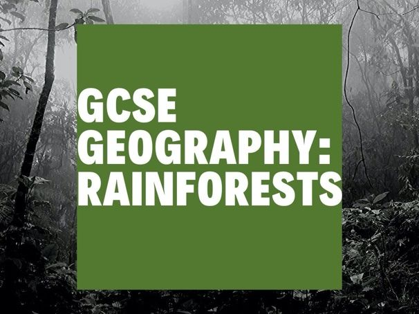 GCSE Geography Rainforests