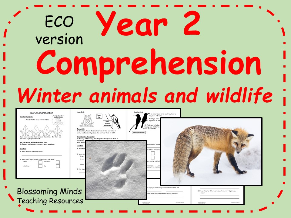 ECO year 2 reading comprehension - winter wildlife and animals