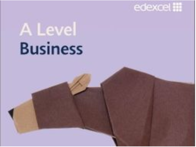 Edexcel A Level Business Theme 1 Mock (A Level Style)