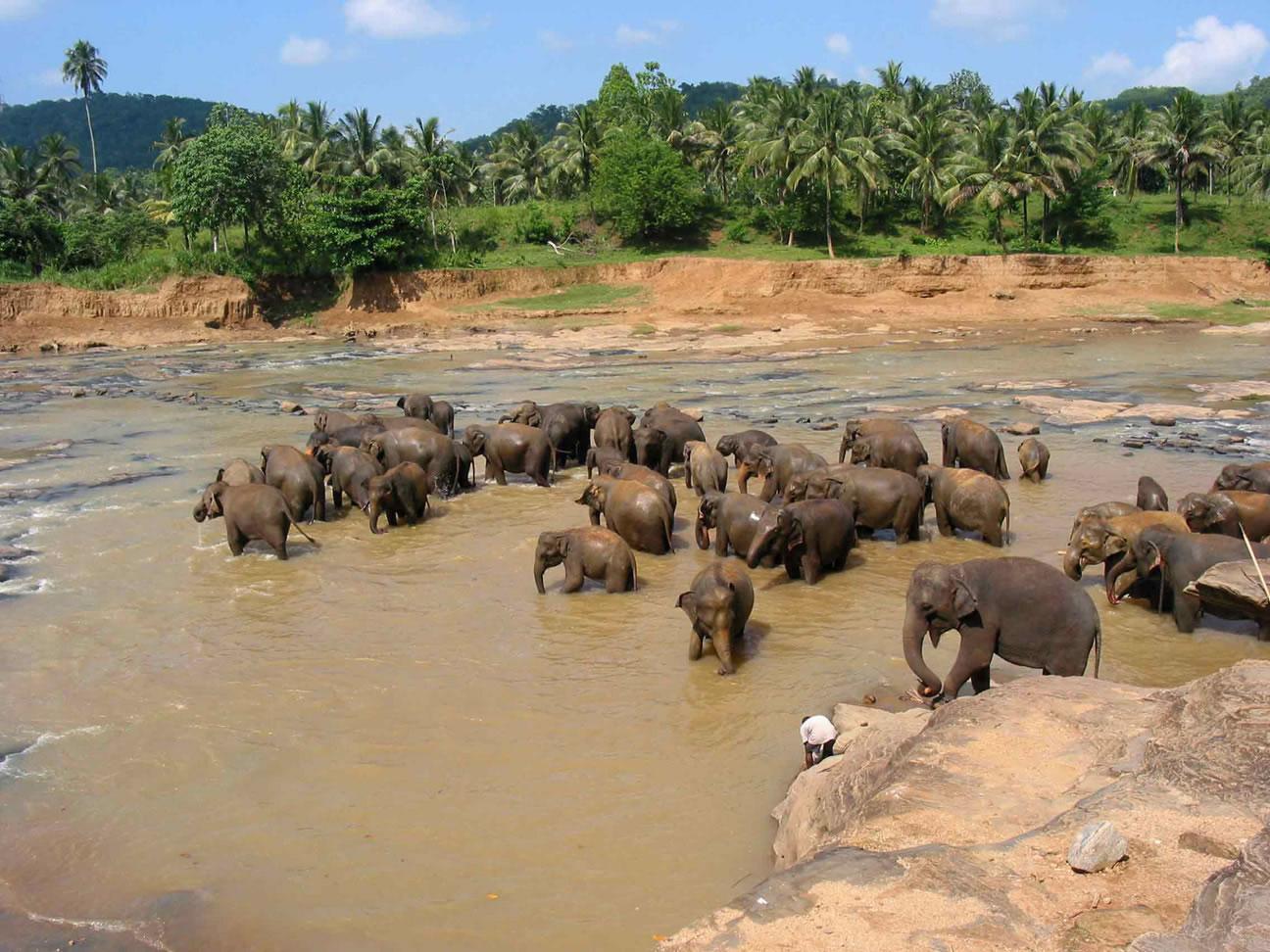 Sri Lanka:  A case study of Rebranding - AS/A2
