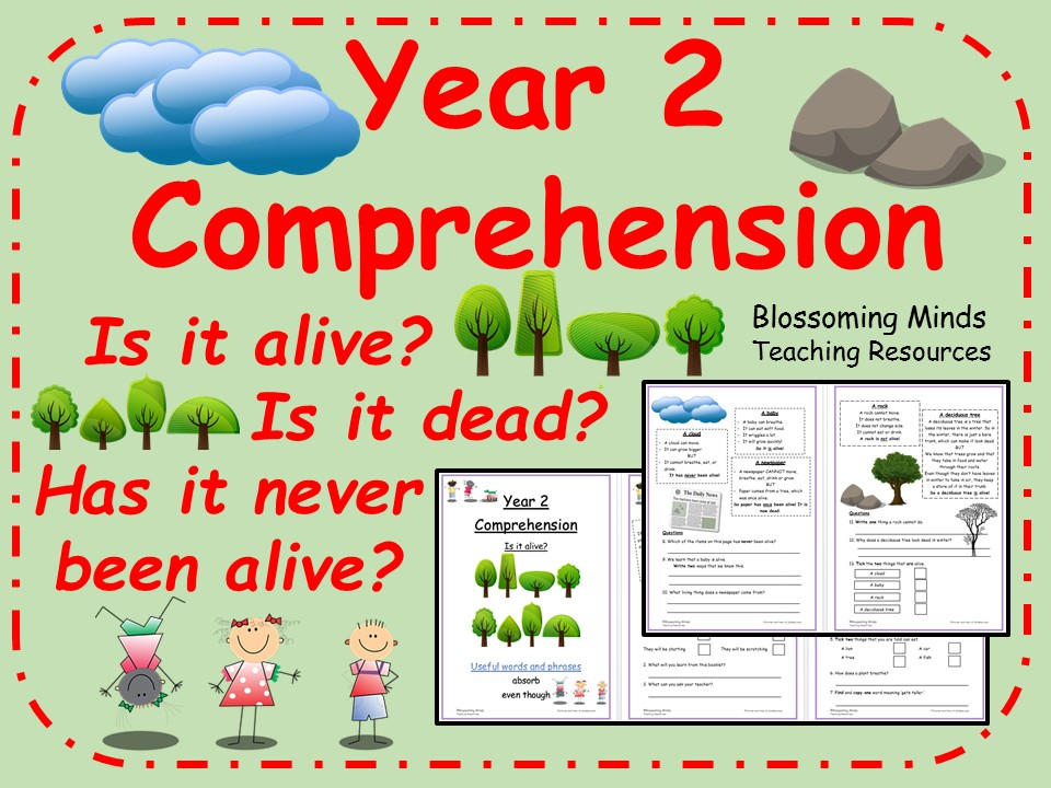 Year 2 Reading Comprehension - Is it alive, dead or has never been alive?