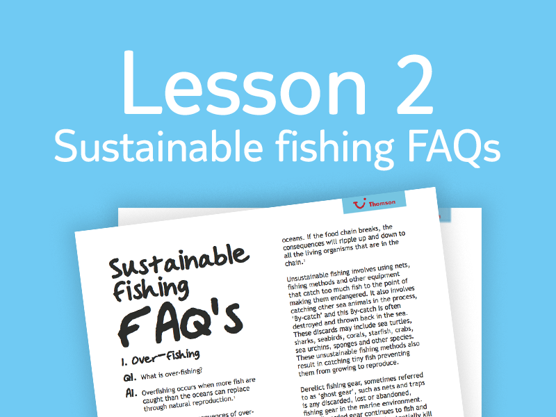 Lesson 2 - FAQs for teachers