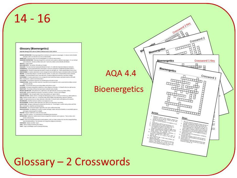B4: Bioenergetics Glossary and 2 Crosswords (AQA 9-1 GCSE Science)