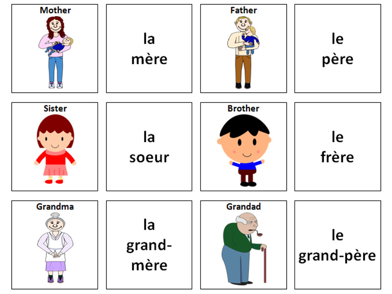 Family: French Vocabulary Card Sort