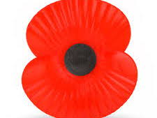 Remembrance day cloze procedure