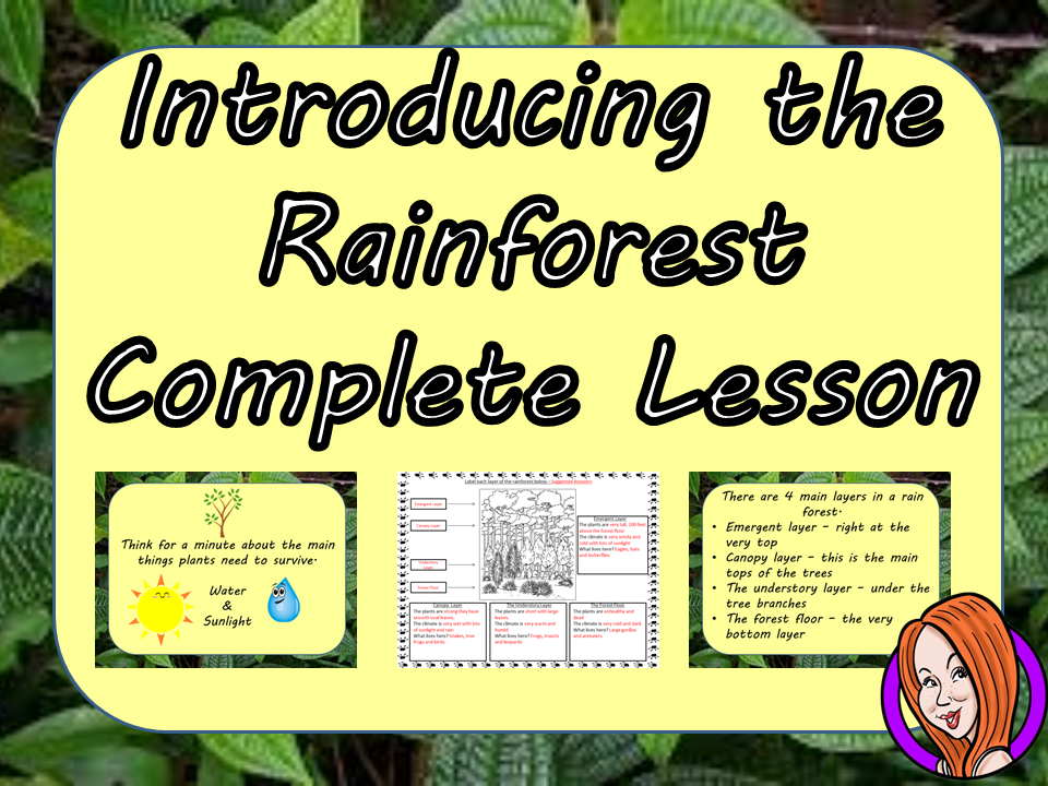 an introduction to the analysis of the rain forest Found in the tropical climate near the equator, rain forests make up six percent of the earth's land surface, but produce 40 percent of its oxygen the rain forest is made up of four layers: emergent, upper canopy, understory, and forest floor.