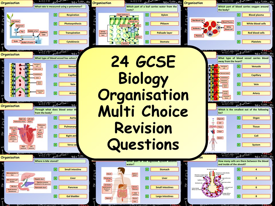 £1 ONLY! KS4 AQA GCSE Biology (Science)Organisation Multiple Choice Revision Questions
