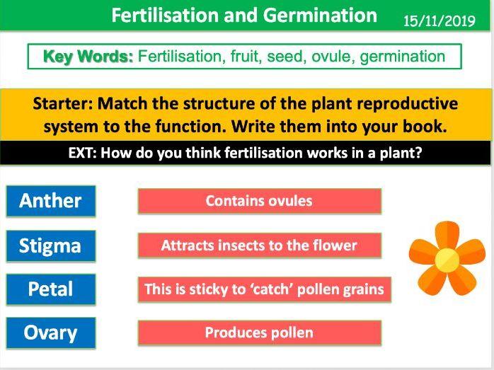 Fertilisation and Germination