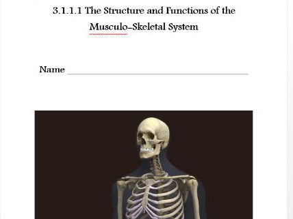 AQA New GCSE PE 9-1. The Musculo Skeletal System. 3.1.1.1