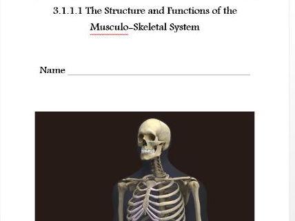 AQA New GCSE PE 9-1. The Musculo Skeletal System Pupil Workbook. 3.1.1.1