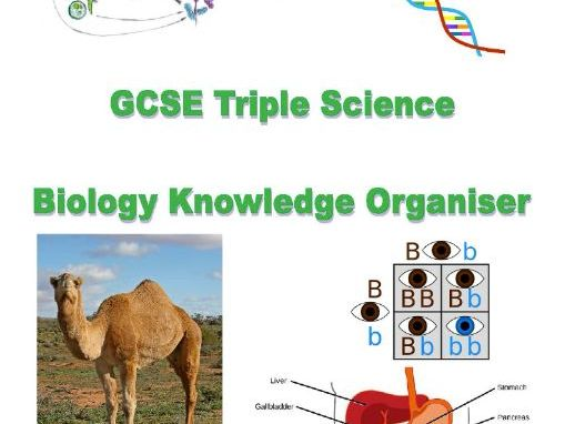 AQA GCSE SCIENCE (TRILOGY) - Knowledge Organisers (Revised)