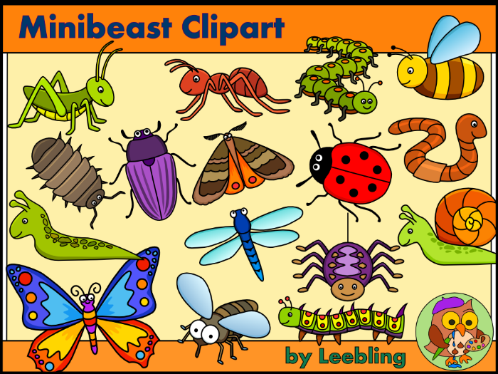 Minibeast clipart - Insect and Bug Clipart