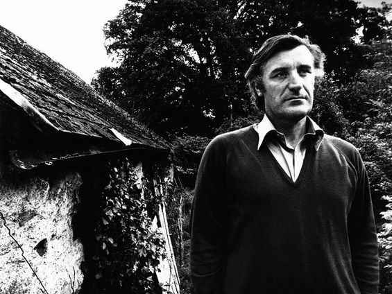 Ted Hughes example essays - 'Cadenza', 'A Memory' and 'October Dawn'