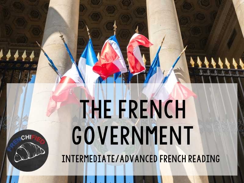 The French Government - French reading activity