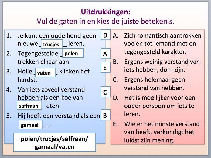 Intermediate Dutch - Psychology - Suitable for B1-B2 Learners.