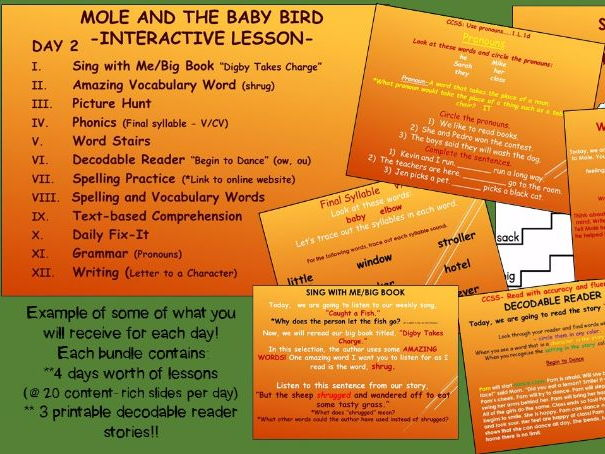 Reading Street Interactive Daily Lessons (4 days) - Mole and Baby Bird-Skills - V/cv, ow, ou