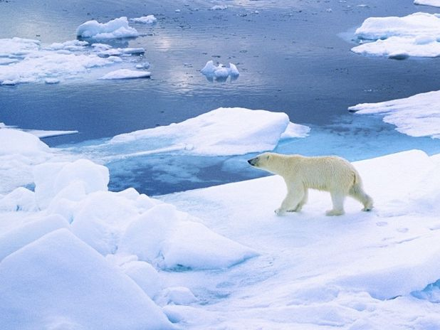 Arctic themed climate change drama workshop for reception and year one children