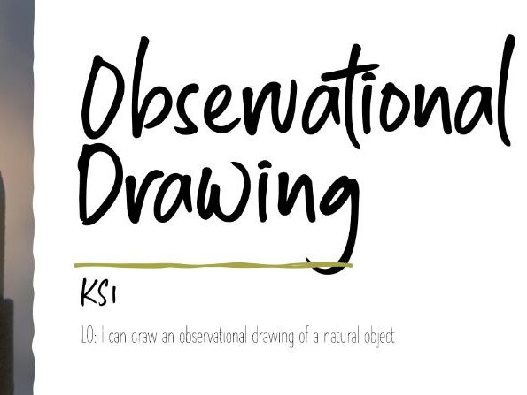 Observational Drawing
