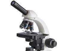 NEW AQA Biology GCSE Required Practical Revision 1 Microscopy