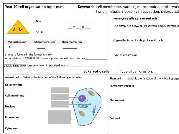 Year 10 GCSE biology revision mats