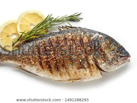 Fish - Food Commodities