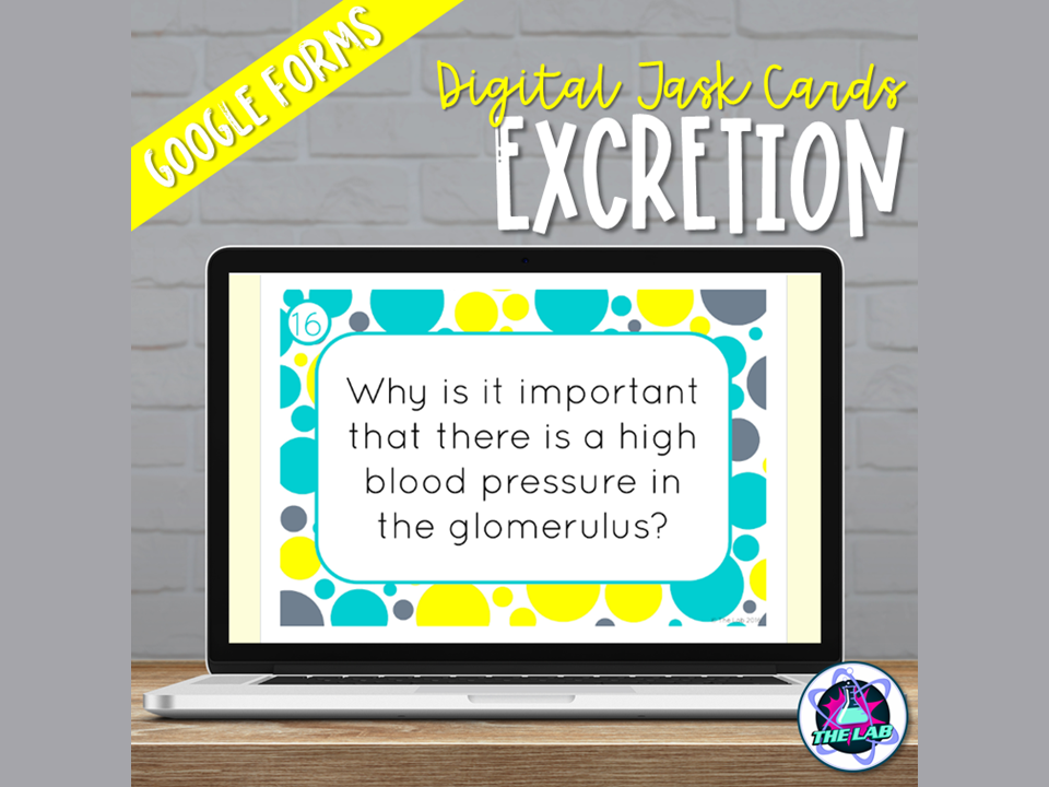 Excretion Digital Task Cards