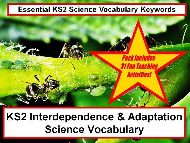 KS2  Interdependence & Adaptation Science Vocabulary + Flashcards + 31 Fun Teaching Ideas!