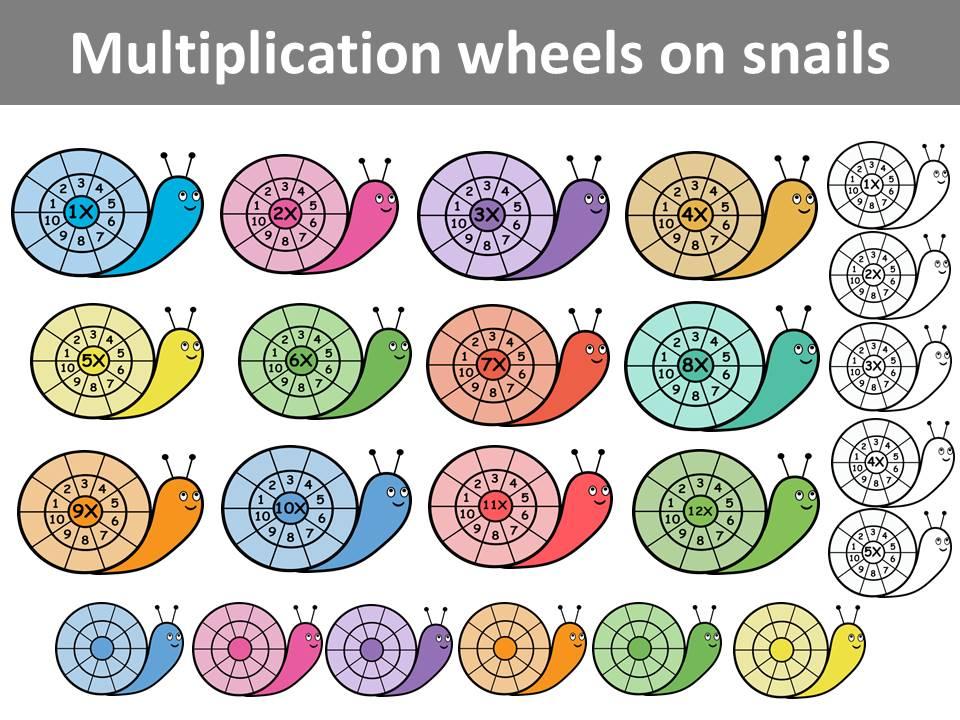 Multiplication wheels on snails