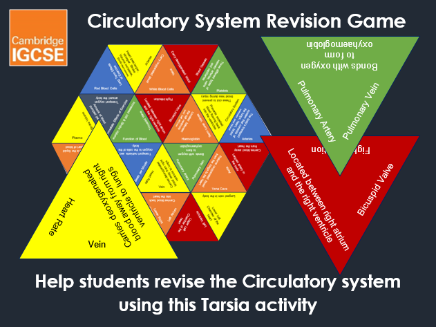 Circulatory System Tarsia Grid - IGCSE Physical Education Revision Game