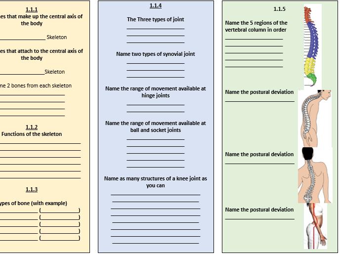 GCSE PE Revision AO1 and AO2 Pack