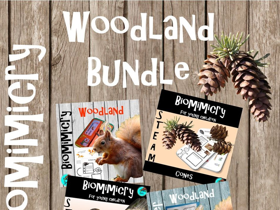 Woodland Bundle - STEAM, Biomimicry for Young Children