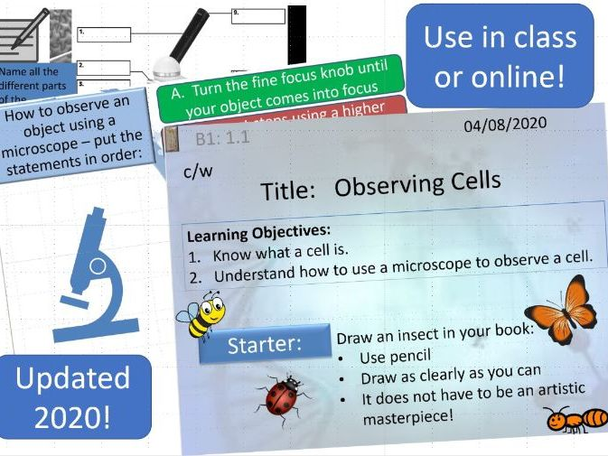 Key Stage 3_ Observing Cells complete lesson