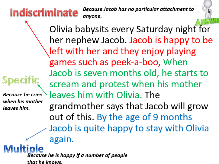 AQA Psychology A Level Attachment: Stages of Attachment