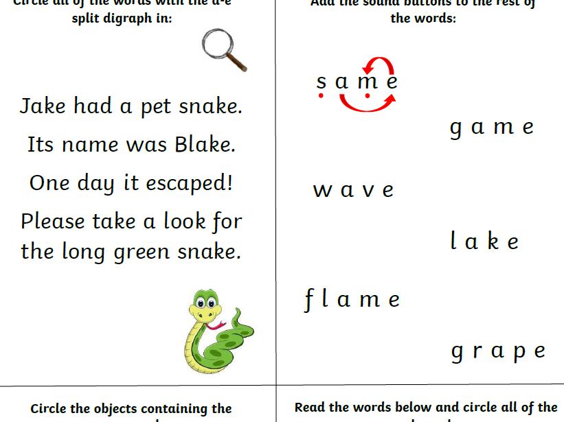 Split Digraph Worksheets