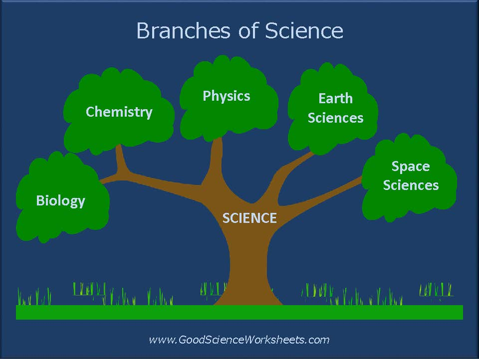 Branches of Science [Presentation]