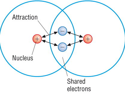 Covalent bonding and covalent compounds