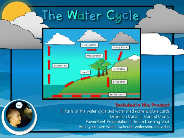 The Water Cycle and Watershed Unit | Montessori Cards and Boom Cards™