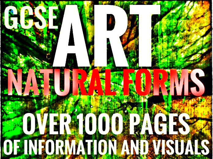 GCSE Art 2018-19. Natural Forms Bundle
