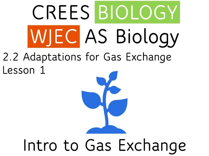 2.2 Lesson 1 Introduction to Gas Exchange