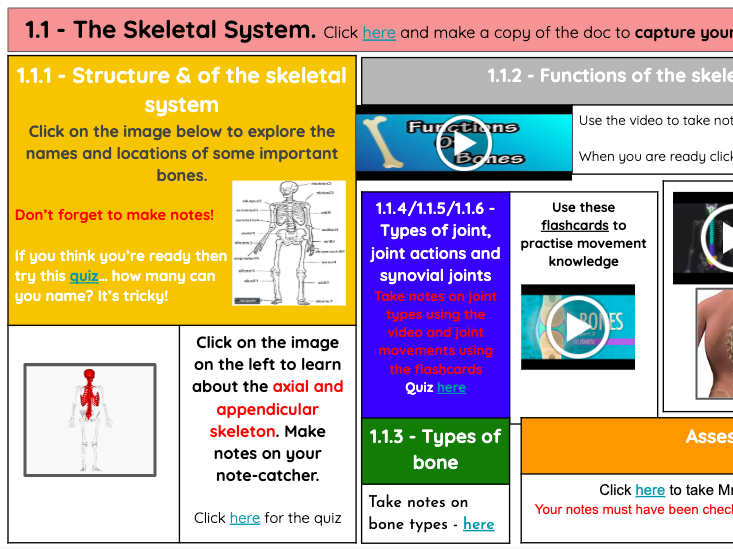 NCFE VCERT NEW SPEC UNIT 1 BODY SYSTEMS (JOB LOT) REVISION/INDEPENDENT INTERACTIVE STUDY SHEETS