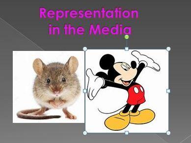 Representation in the Media