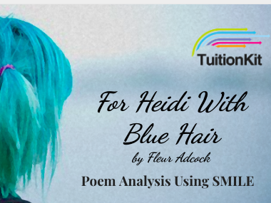 For Heidi With Blue Hair - by Fleur Adcock (SMILE Analysis points)