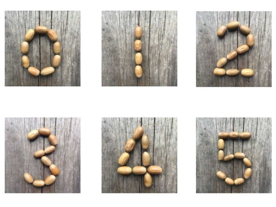 Acorn numbers and subitising images