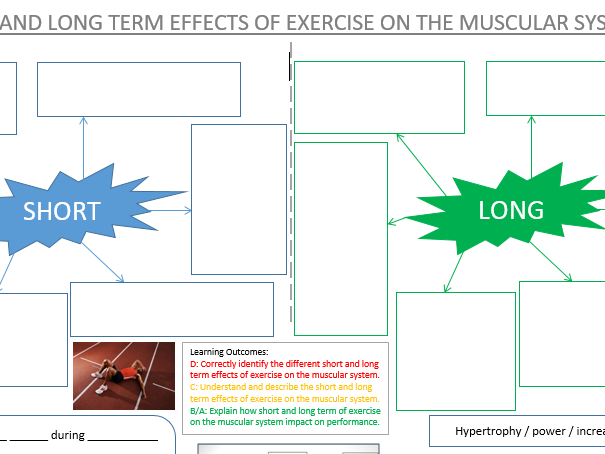 GCSE PE - Effects of exercise on muscular system