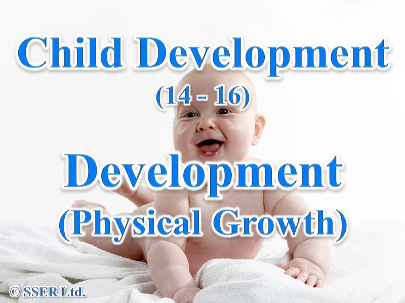 3.2 Child Development - Development - Physical Growth