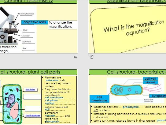 AQA Science Trilogy-Biology-Paper 1- Revision- Cell structure, Osmosis, Non-Communicable Disease