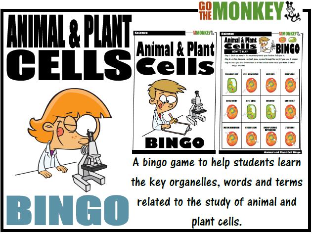 Animal and Plant Cell Bingo