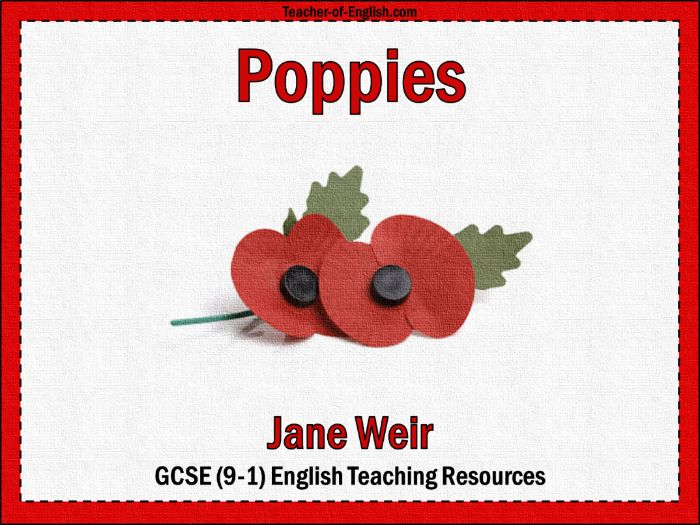 Poppies Jane Weir (PowerPoint and worksheets)