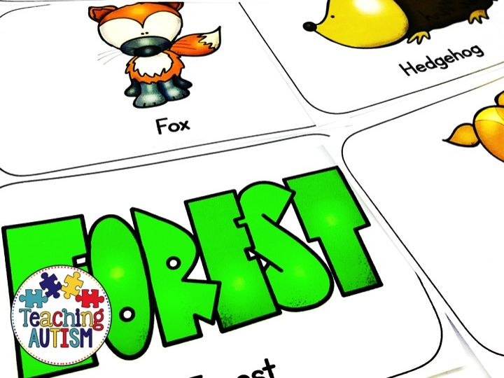 Woodland Forest Role Play Packet