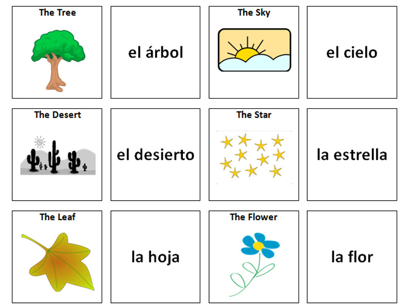 Nature: Spanish Vocabulary Card Sort